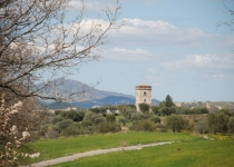 Veduta Torre Molfese